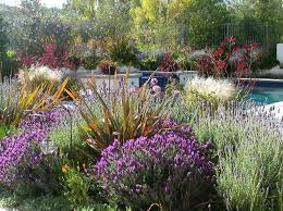 drought tolerant garden. Drought Tolerant Garden Plans Amazing Landscape And Design