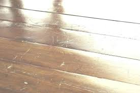 Best hardwood floors for dogs Hickory Best Hardwood Floors For Dogs Wood Flooring Pets Luxury Realtorcom Best Hardwood Floors For Pets Various Kinds Of Pet
