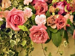 beautiful flowers wallpapers free wallpapers free