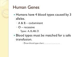 parent blood types chart blood type chart facts and information on group types regarding