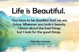Life Is Beautiful With You Quotes Best Of Life Is Beautiful Quotes And Sayings 24greetings