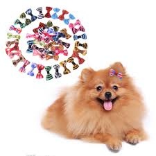 Decorative Dog Bowls Online Get Cheap Dog Bows Aliexpresscom Alibaba Group