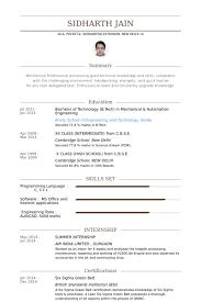Summer Internship Resume samples