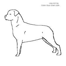 Small Picture Rottweiler Coloring Page