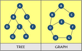 Difference Between Tree And Graph With Comparison Chart