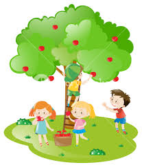 apple tree illustration. kids picking apples from apple tree illustration