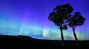 Northern Lights Buffalo Ny 2019 Northern Lights In The Northern U S Maybe So Or Maybe A