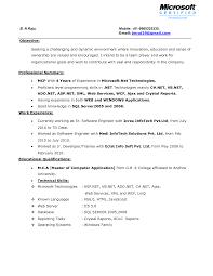 Server Job Description Resume Example
