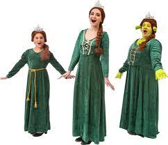 al costumes for shrek the al young princess fiona princess fiona and princess