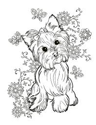 While a toddler or preschooler might scribble all over a coloring sheet, with no respect for the boundaries (lines on the coloring page), as the child gets older, they will begin to respect those lines. Current Yorkie Coloring Pages Leslie Website