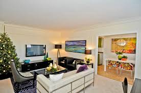 Decorating Apartment On A Budget Decorating Apartment On A Budget Apartment  Living Room Decorating Remodelling