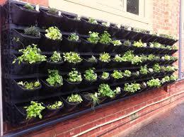 Kitchen Garden In Balcony Vertical Vegetable Garden Balcony Garden Ideas Innovative