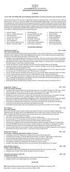 Resume Writing Service Best Resume Writer LinkedIn Profile Writing Service Chicago 75