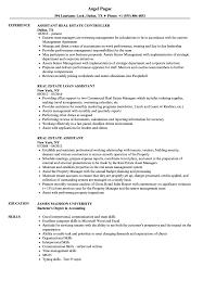 Real Estate Assistant Resume Samples Velvet Jobs