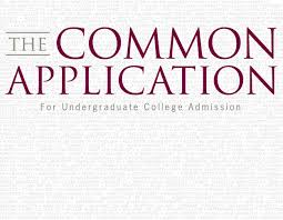 Common App Essay Example Andrew Salzer 2015 The Forest Scout