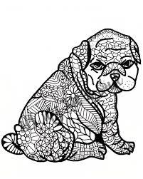 Geweldige Kleurplaat Hond Met Puppy Krijg Duizenden Kleurenfotos