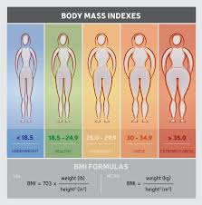 6 Reasons Why Bmi Is Not The Best Indicator Of Healthy Body