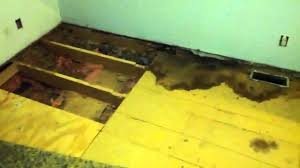 Repair Bathroom Floor Mobile Home Floor Repair Nasty Nasty Job Youtube