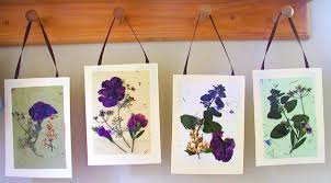 Pressed Flower Cards. Mominmadisonpressedflowercards