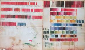 Colour Tips And Techniques Botanical Art Artists