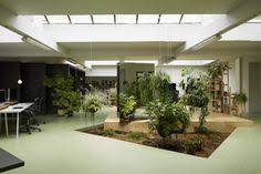 Office gardening Rooftop Garden R011def 700x467 Random Studios Homelike Amsterdam Offices Indoor Gardening Indoor Plants Potted Plants Pinterest 276 Best Office Plants Images Inside Garden Indoor Plants