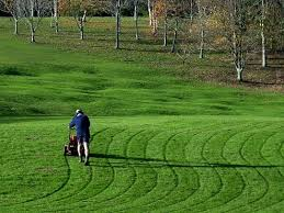 Mowing Patterns Amazing Mowing Patterns PhotosbyAngela Flickr