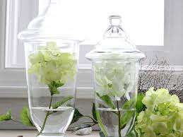 Decorative Glass Jars With Lids Decorative Glass Containers With Lids Home Design Ideas 64