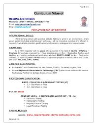 Ndt Inspector Resume Elim Carpentersdaughter Co