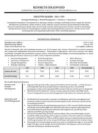 images about Resume Examples on Pinterest Pinterest CEO   CFO Executive Resume Example