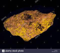 Sodalite Uv Light Sodalite Glowing Yellow In Ultraviolet Light Stock Photo