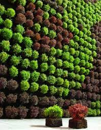 Small Picture Vertical Garden Design Ideas completureco