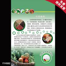 Buy Crop Beans Nutritional Value Of Balanced Diet Healthy