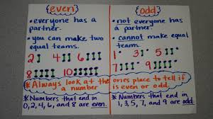 2nd Grade Math Anchor Charts 77 Punctual Odd And Even Numbers Anchor Chart