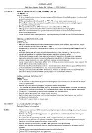 Download Manager AR Resume Sample as Image file