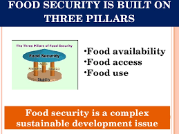 food security and pds system in  food security