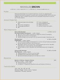 Web Developer Resume Template New Thank You For Reviewing My Resume