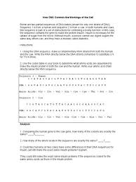 Worksheet : Historical Fiction Worksheets For 5Th Grade Adjective ...