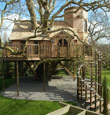 tree house plans for adults. Beautiful Adults Tree House Mansion To Tree House Plans For Adults