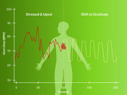 Heart Rate Variability Chart What Is Heart Rate Variability And What Can It Tell Us About