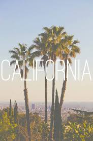 los angeles palm trees tumblr Google Search Background
