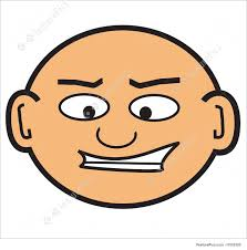 Image result for bald head