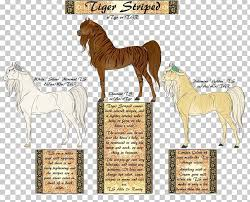 Mustang Mane Pony American Quarter Horse American Paint