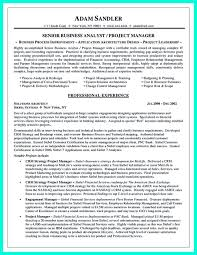 Business Analyst Finance Domain Resume Sample Business Analyst Finance Domain Resume Resume For Study 18