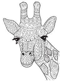 Small Picture Ten Adult Coloring Pictures For People Who Love April The Giraffe