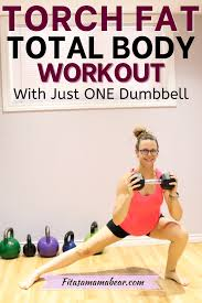 one dumbbell workout total body fat