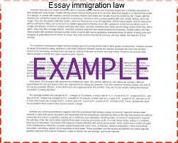 essay immigration law term paper writing service essay immigration law this is due to our current immigration laws that has separated families