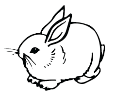 Printable Bunny Rabbit Coloring Pages Dropnewsme