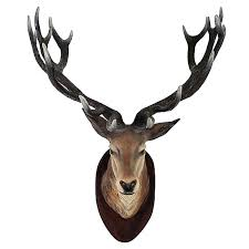 deer head wall mount deer head wall mount decor