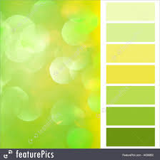 Artistic Tools Color Selection Chart Stock Picture
