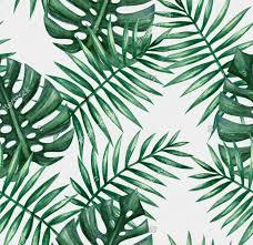 Palm Leaf Pattern Magnificent 48 Leaf Design Patterns Textures Backgrounds Images Design